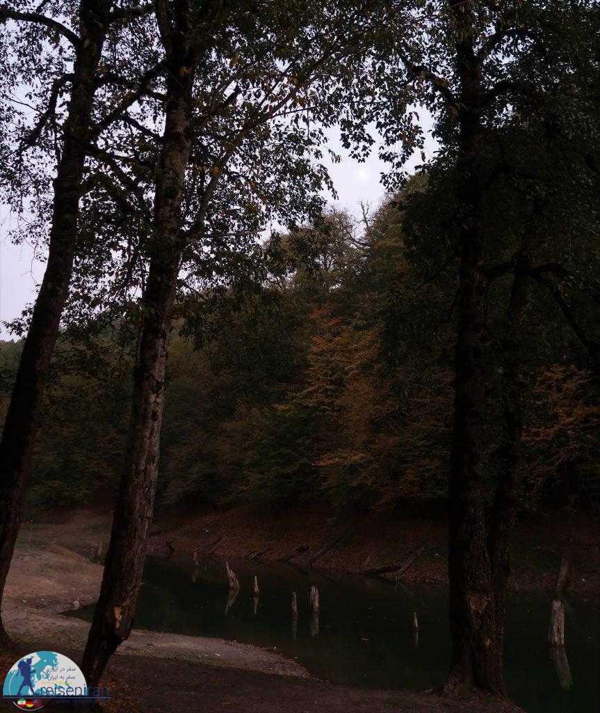 دریاچه چورت در جنگل
