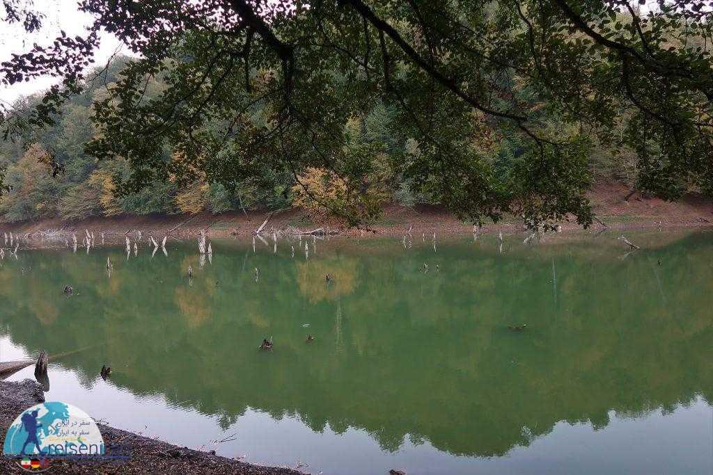 دریاچه چورت در دل جنگل