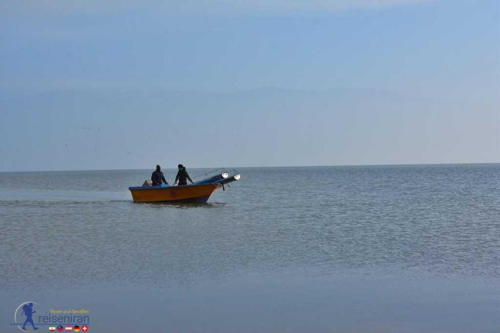 قایق در ساحل میانکاله