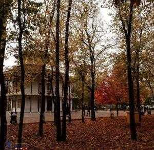 پارک شهر رشت در پاییز