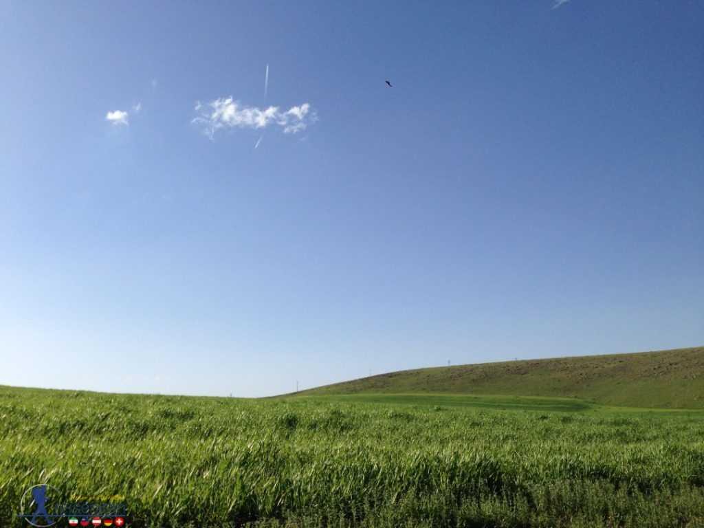 طبیعت سرسبز کردستان
