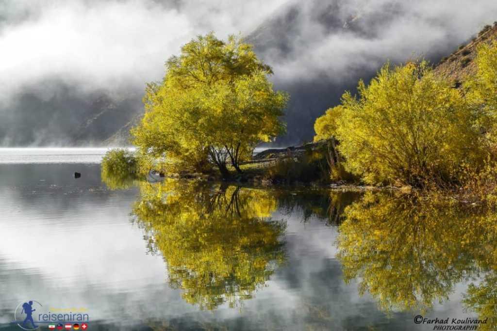 درختان اطراف دریاچه گهر