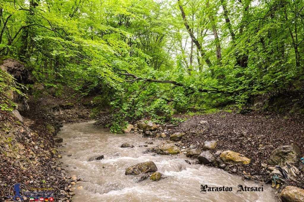 رودخانه جاری در جنگل ناهارخوران گرگان