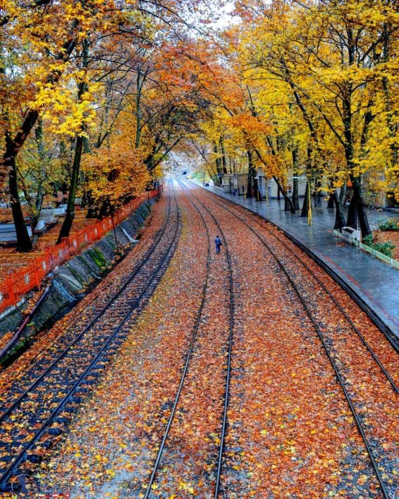 ریل پاییزی زیبای بیشه