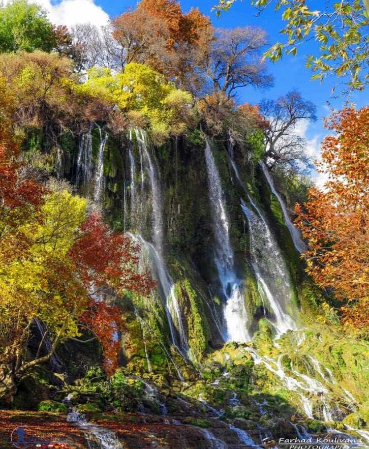 طبیعت آبشار بیشه