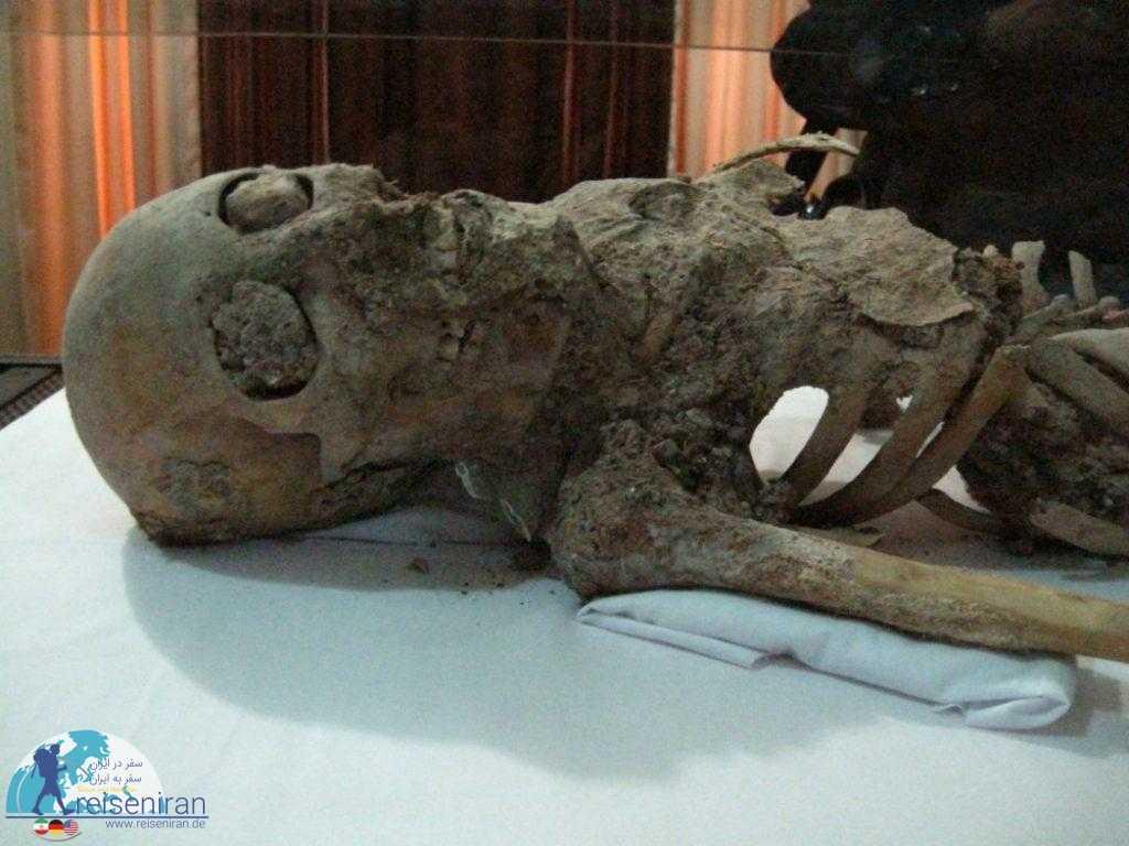 اسکلت باستانی موزه زنجان