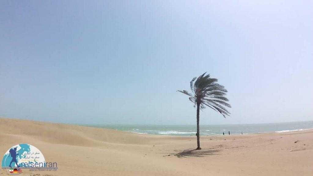 دریای عمان( خلیج عمان)