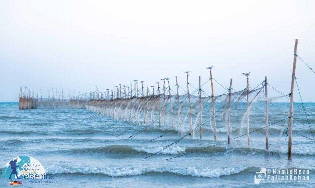 ساحل بندرعباس زیبا