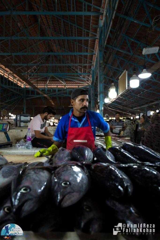 عکس بازار ماهی فروشان بندرعباس