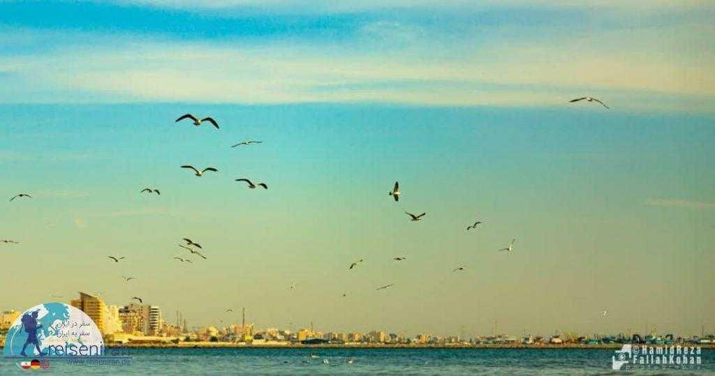 عکس ساحل بندر عباس