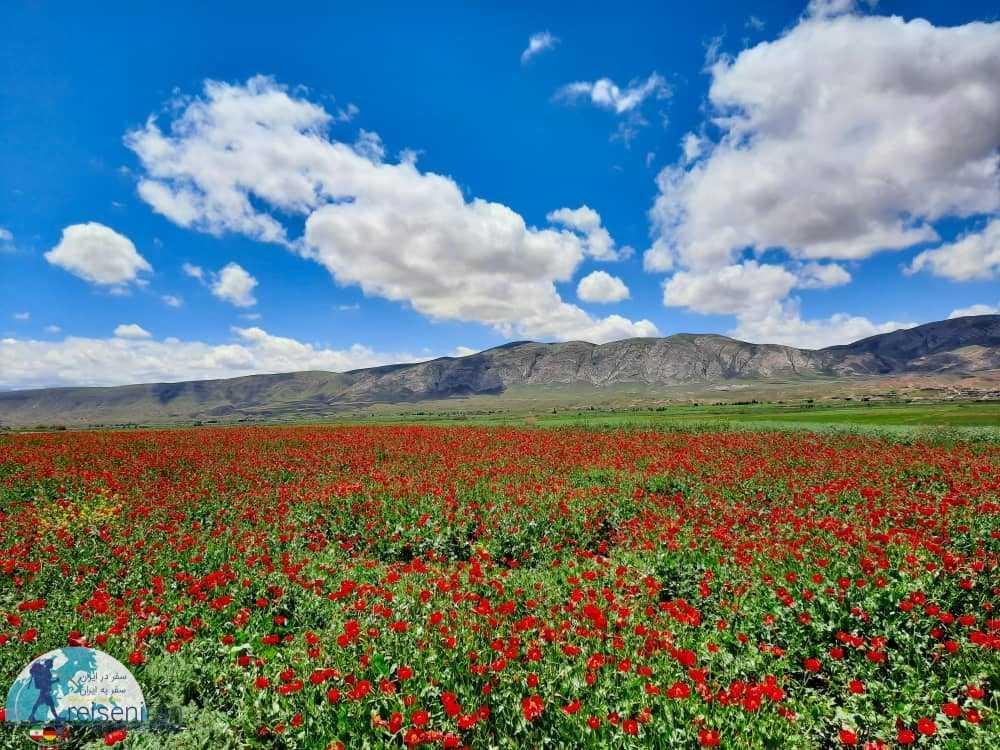 دشت های اطراف رود اترک