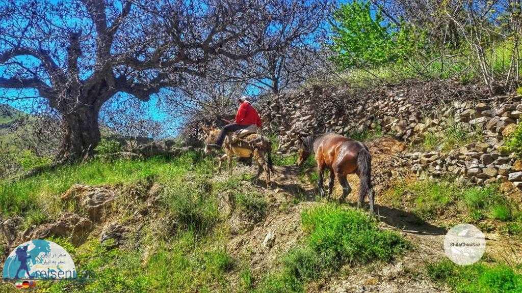 روستا شیلاندر زنجان