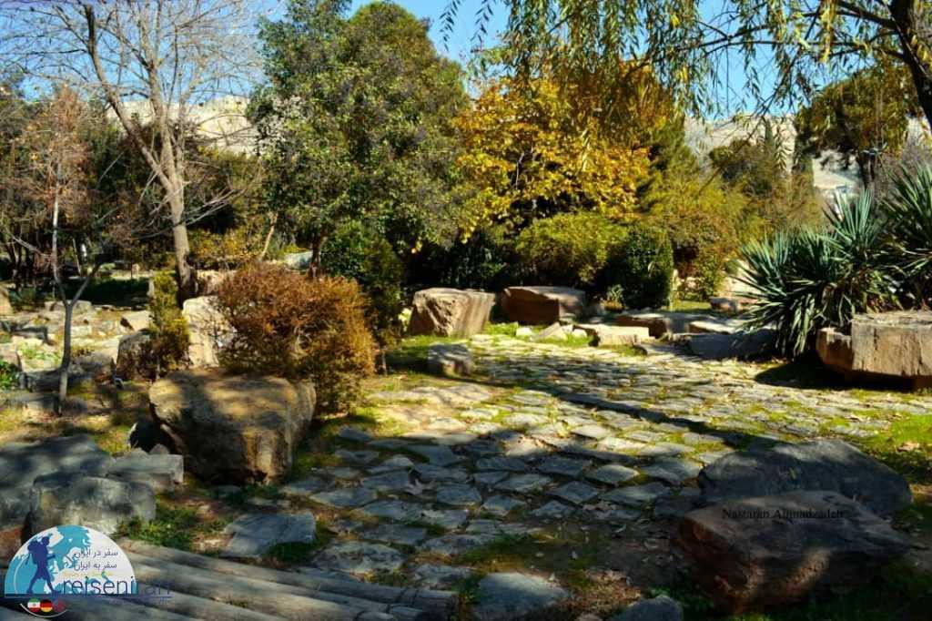درختان باغ ارم شیراز