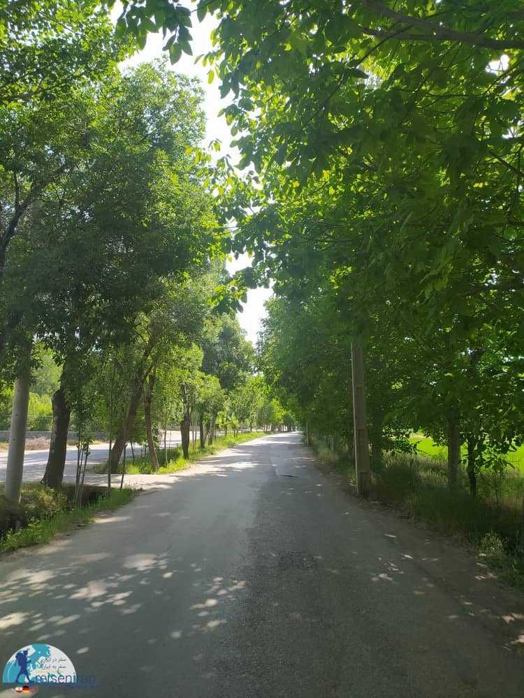 طبیعت تابستانی گلپایگان