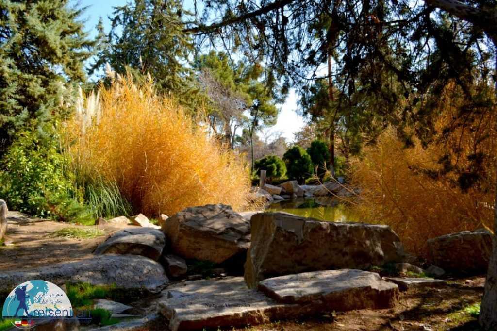 فضای آزاد باغ ارم شیراز