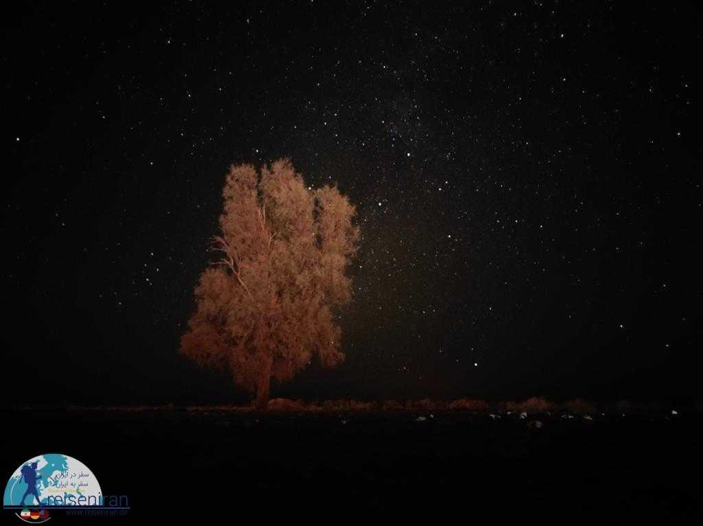 شب پرستاره روستا چوپانان