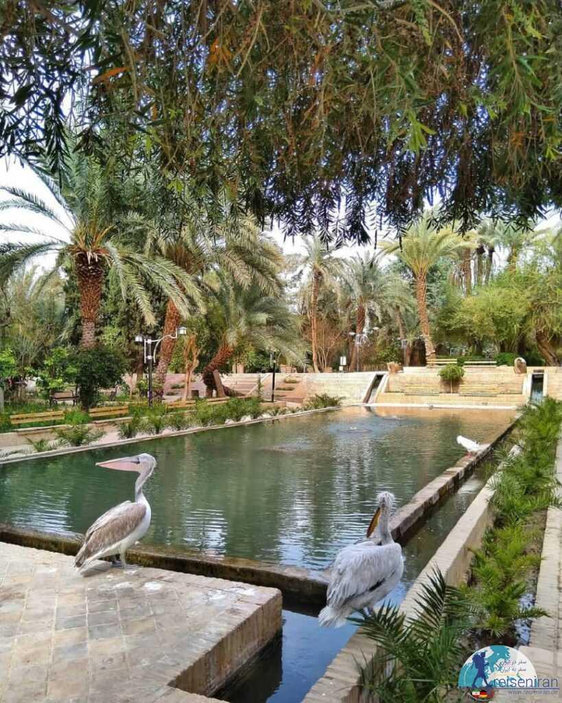 حوض باغ گلشن