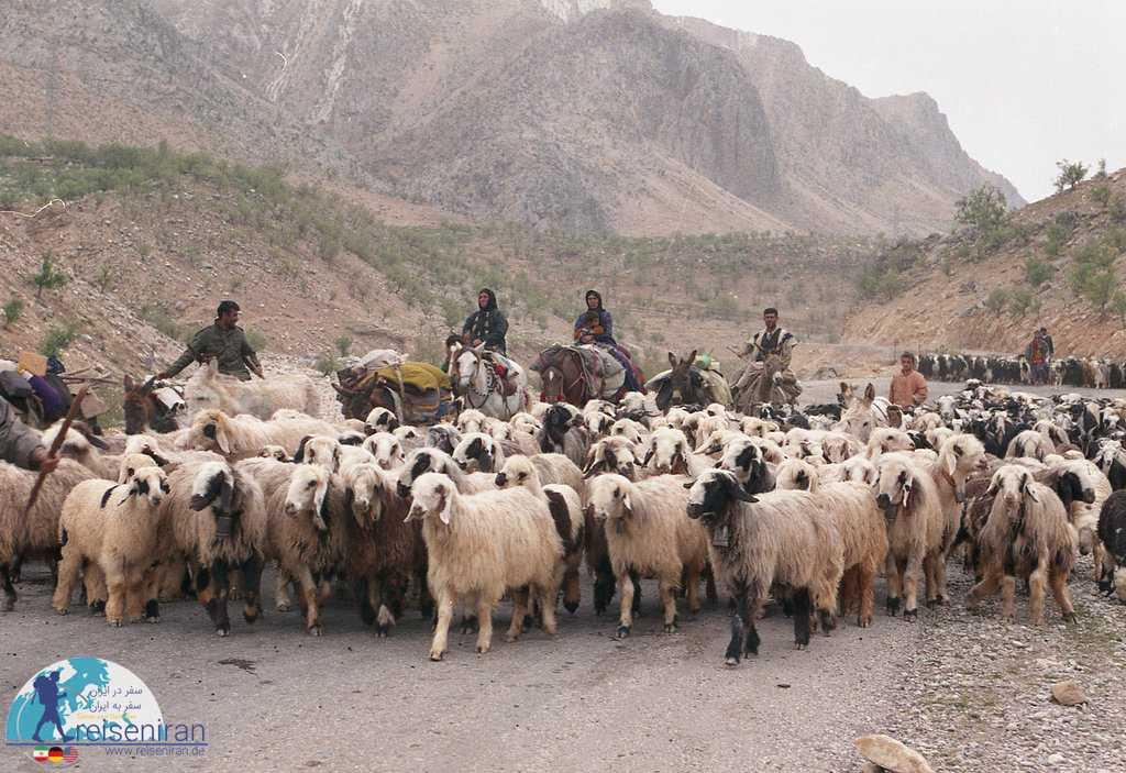 کوچ عشایر بختیاری