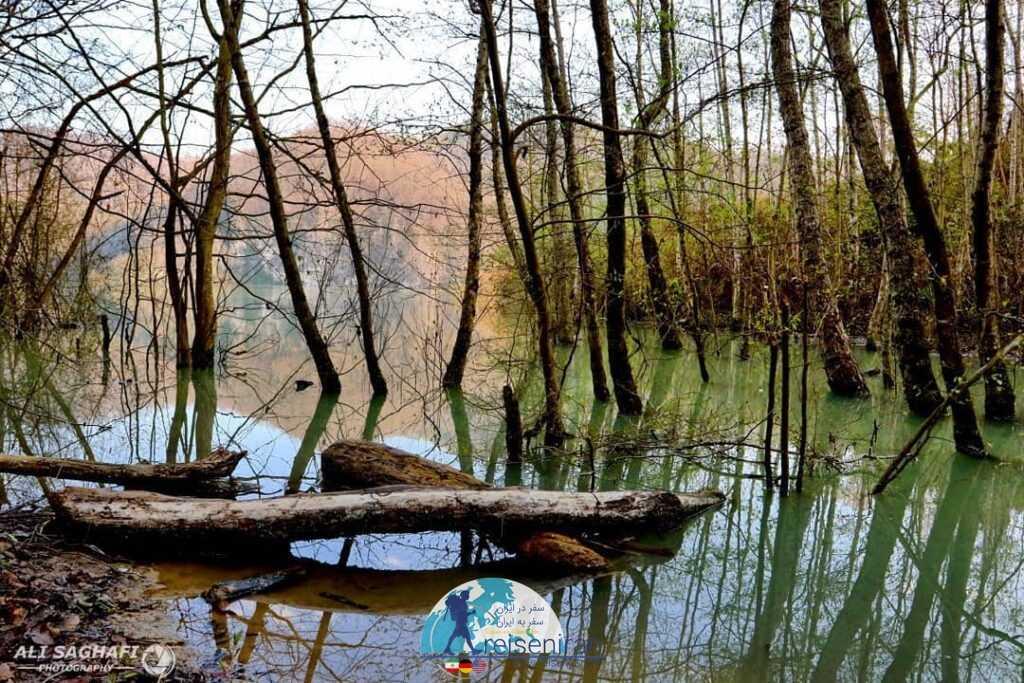 تالابی در مازندران