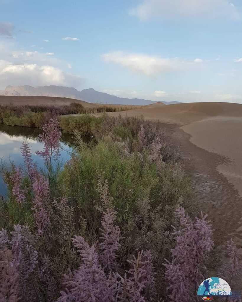تالاب پساب یزد در کنار کویر